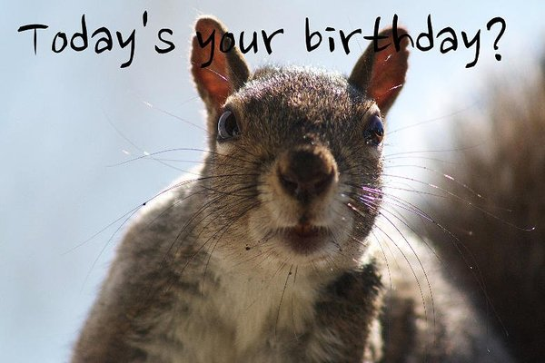 cute funny birthday images pictures