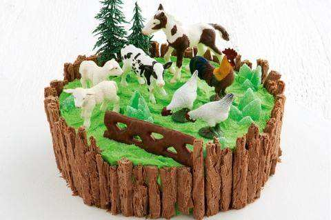 Farmyard birthday cake pictures for Little Animal Lovers