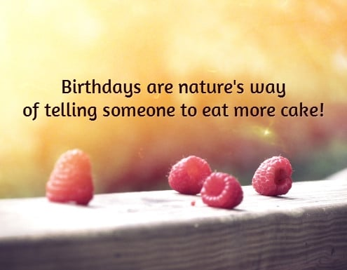Eat More Cake Birthday Quotes