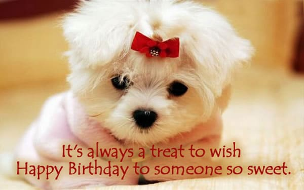 cute birthday wishes tumblr