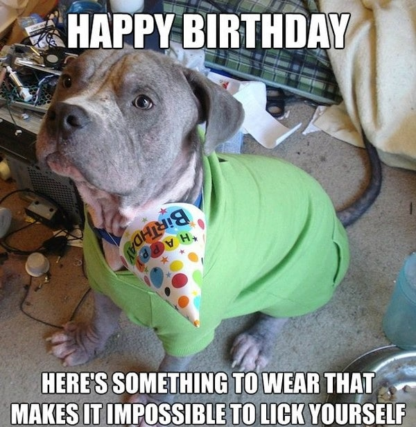 birthday memes for dad 100 ultimate funny happy birthday meme's my happy birthday wishes