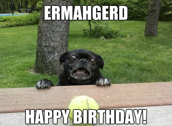 happy birthday meme batman 100 ultimate funny happy birthday meme's my happy birthday wishes,Birthday Meme Animal