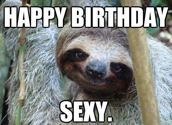 Happy birthday sloth meme - photo#28