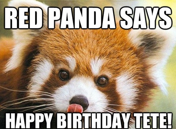 Funny Happy Birthday Boyfriend Meme : Ultimate funny happy birthday meme s my