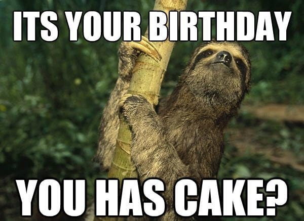 Happy Birthday Memes Sloth