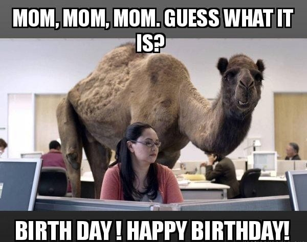 Funny Meme For Coworkers : 100 ultimate funny happy birthday meme's my happy birthday wishes