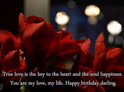 Admirable 100 Romantic And Happy Birthday Wishes For Husband My Happy Valentine Love Quotes Grandhistoriesus
