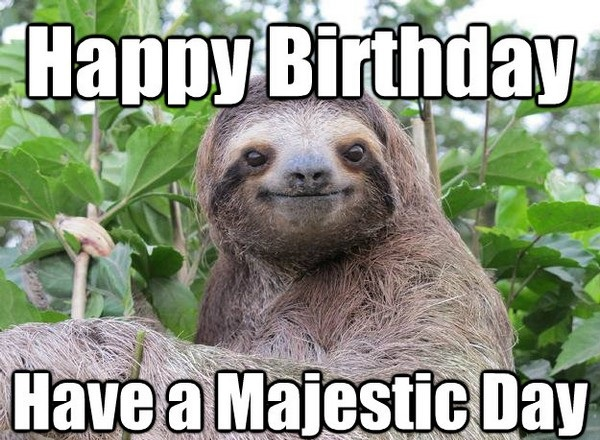 Happy birthday sloth meme - photo#3