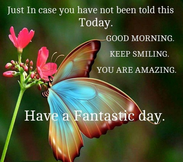 Best Good Morning Quotes Greetings
