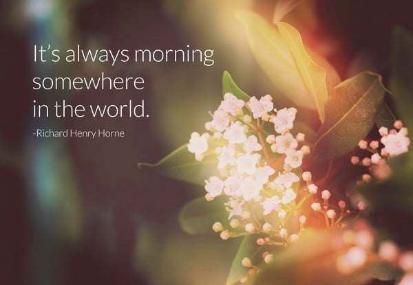 Good Morning Quotes Beautiful Images