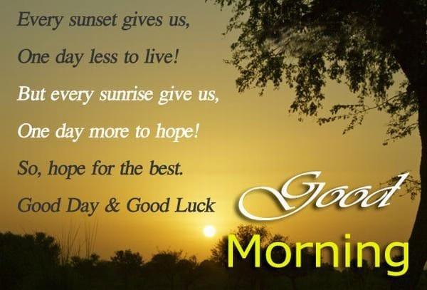 Good Morning Wishes For Cards