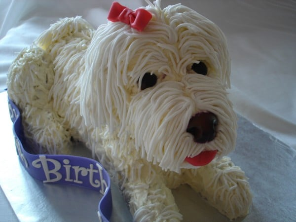 Birthday Cake Edible For Dogs
