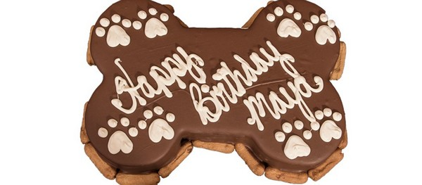 Birthday Cake Recipes For Dogs Easy