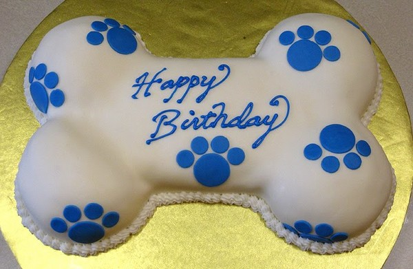 Dog Bone Birthday Cake