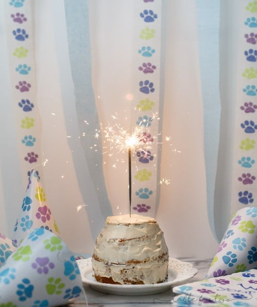 Grain Free Dog Cake