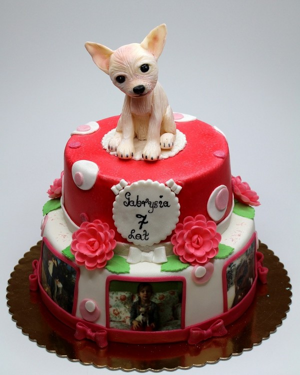 How To Make A Birthday Cake For Dogs