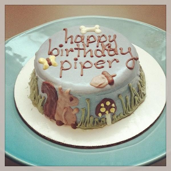 Birthday Cake For Dogs 30 Easy Doggie Birthday Cake Ideas 2018