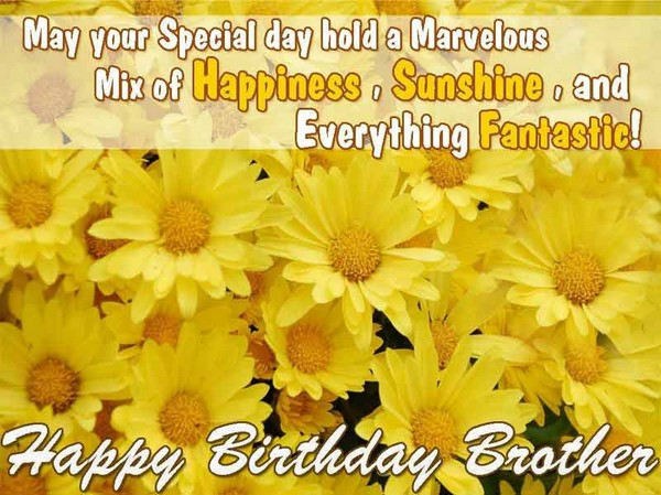 Birthday Wishes For Elder Brother From Sister Quotes