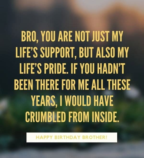 Happy Birthday Quotes Wishes Images For Brother