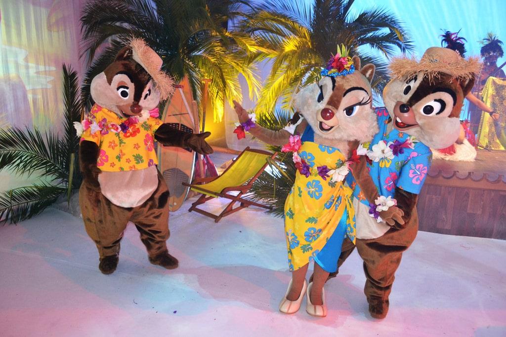 Three Squirrel Costume